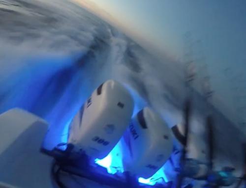 Suzuki Tuna Trip 2015